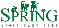 Spring Veterinary Care: Pet Clinic