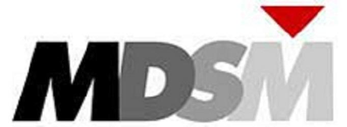 MDSM Consulting: Mobile App Developer