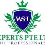 WSHExperts: Multi-Channel Msrketing
